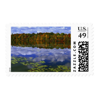 Canada, Ontario. Autumn color reflects in Park Postage
