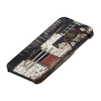 Canada: Ontario, Bruce Peninsula, Cape Chin, Case For iPhone SE/5/5s