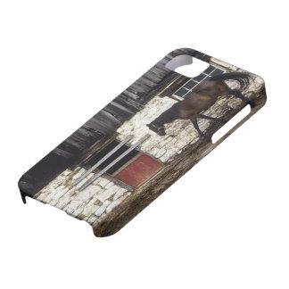 Canada: Ontario, Bruce Peninsula, Cape Chin, iPhone SE/5/5s Case
