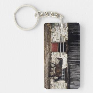 Canada: Ontario, Bruce Peninsula, Cape Chin, Acrylic Key Chains
