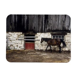 Canada: Ontario, Bruce Peninsula, Cape Chin, Vinyl Magnets