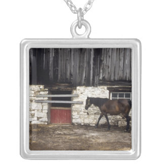 Canada: Ontario, Bruce Peninsula, Cape Chin, Silver Plated Necklace