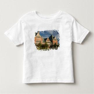 CANADA, Ontario, Thunder Bay: Prince Arthur's T-shirt