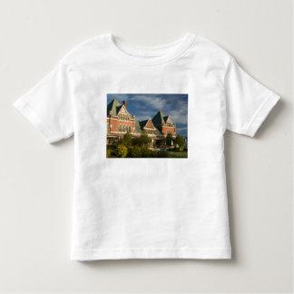 CANADA, Ontario, Thunder Bay: Prince Arthur's Toddler T-shirt