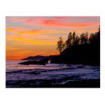 Canada, Pacific Rim National Park Reserve, West Postcard