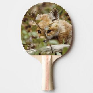 Canadá, parque nacional de Pelee del punto. Zorro  Pala De Ping Pong