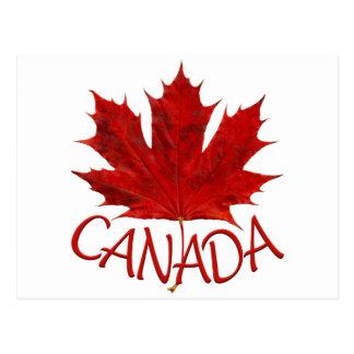 Canada Postcards Custom Canada Souvenir Postcards