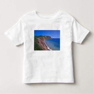 Canada, Quebec, Magdalen Islands, Cap Alright 2 Toddler T-shirt