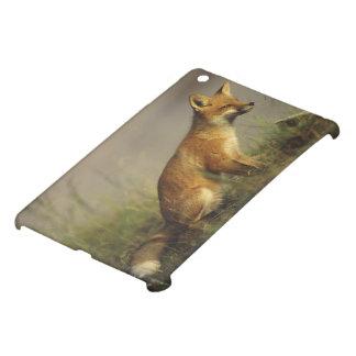 Canada, Quebec. Red fox cub at sunrise. Credit iPad Mini Covers