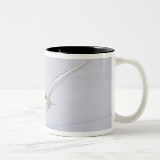 Canada, Quebec. Snowy owl flies low over snow. Two-Tone Coffee Mug