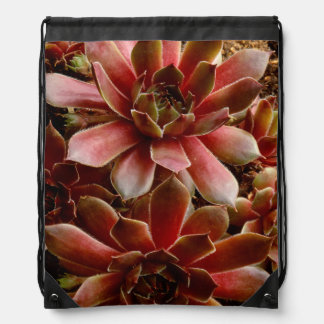 Canada, . Succulent plant Drawstring Backpack