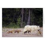 Canadá, territorios del noroeste, gran lago auxili tarjeta de felicitación