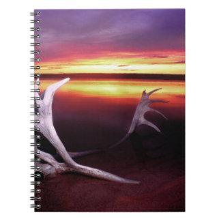 Canadá, territorios del noroeste, lago whitefish cuaderno