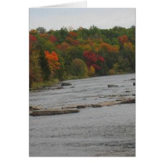 CANADA Toronto Fall Season Views Cards