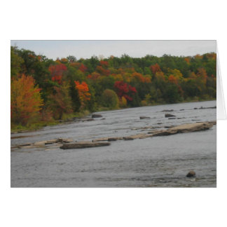CANADA Toronto Fall Season Views Greeting Card