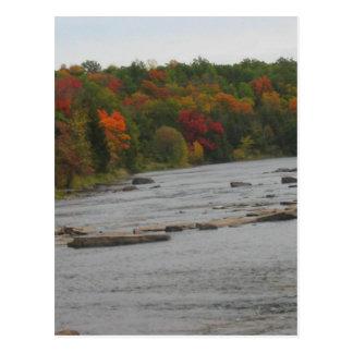 CANADA Toronto Fall Season Views Postcard