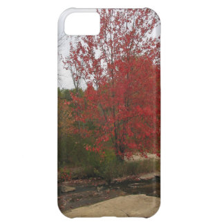 CANADA Toronto Red Bloom - Falls Views iPhone 5C Case