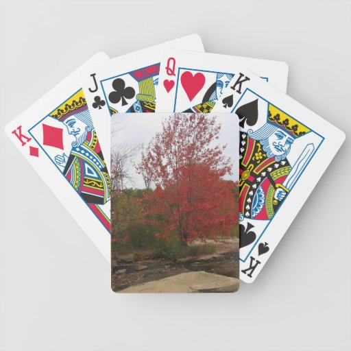 CANADA Toronto  Red Bloom - Falls Views Poker Deck