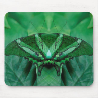 Canada, Victoria, Victoria Butterfly Gardens Mouse Pad
