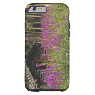 Canada, Yukon, Ross River area, Abandoned cabin Tough iPhone 6 Case