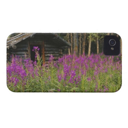 Canada, Yukon, Ross River area, Abandoned cabin iPhone 4 Cover
