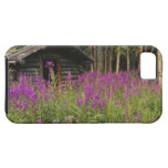 Canada, Yukon, Ross River area, Abandoned cabin iPhone SE/5/5s Case