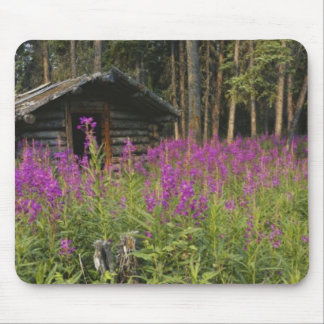 Canada, Yukon, Ross River area, Abandoned cabin Mouse Pad