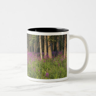 Canada, Yukon, Ross River area, Abandoned cabin Two-Tone Coffee Mug