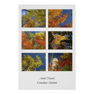 Canadian Autumn Poster