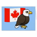 Canadian Bald Eagle Greeting Cards
