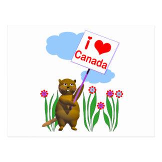 Canadian Beaver Loves Canada Postcard