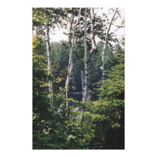 Canadian Birch Forest Stationery