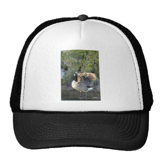 Canadian Feather Show Trucker Hat