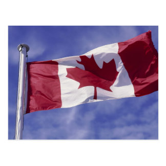 Canadian flag postcard