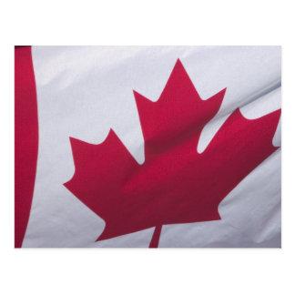 Canadian Flag. Postcard