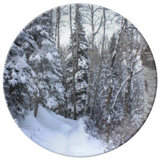 Canadian forest in winter porcelain plate