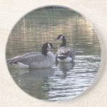 Canadian Geese Beverage Coaster
