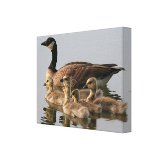 Canadian Geese Bird Lovers Gifts Canvas Print