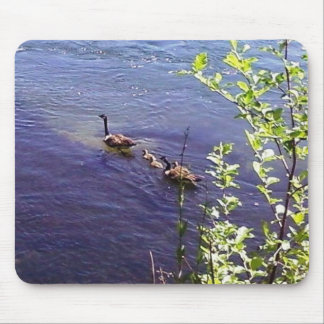 Canadian Geese Family Mouse Pad