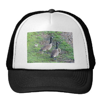 Canadian Geese Family Trucker Hat