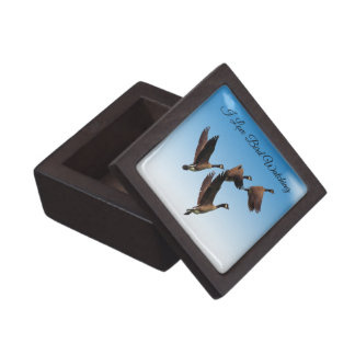 Canadian geese flying together kids design jewelry box