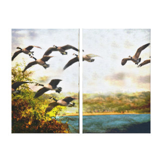 Canadian Geese in Flight Stretched Canvas Print