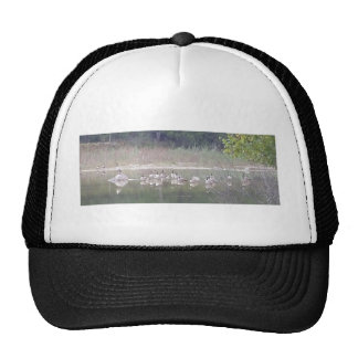 Canadian Geese in the Pond Trucker Hat