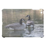 Canadian Geese iPad Mini Case