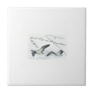 Canadian Geese Tile.