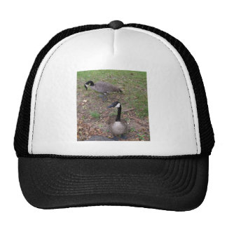 Canadian Geese Trucker Hat