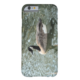 Canadian Goose Barely There iPhone 6 Case