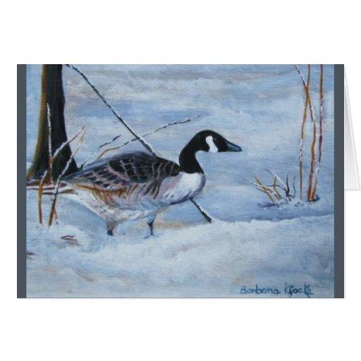 Canadian Goose Cards
