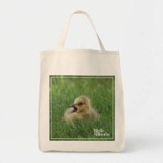 Canadian Goose Chick Grocery Tote Bag
