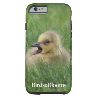 Canadian Goose Chick Tough iPhone 6 Case